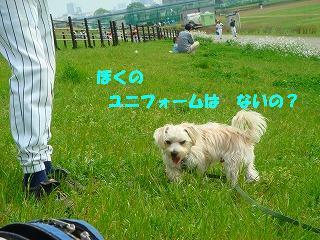 4番 ピッチャー ハーブくん.JPG