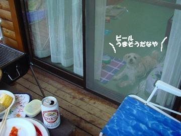 お・ビール.JPG