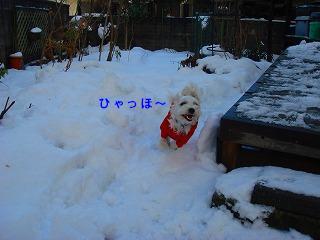 はじめての雪あそび.JPG