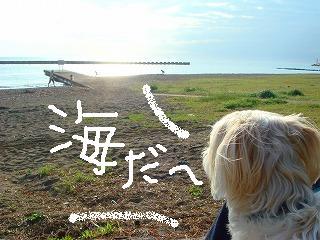 海だ~.JPG