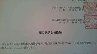 DSC_0682 (2).jpg